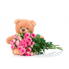 20 Pink Roses and 12 inches Teddy Combo