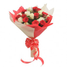 18 red white rose dual tone pack bunch