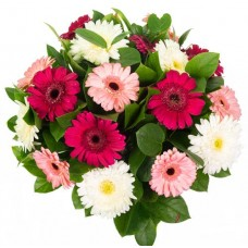 24 mix gerbera bunch