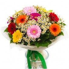 15 mix gerbera bunch