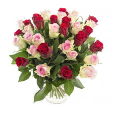 30 red pink rose in vase