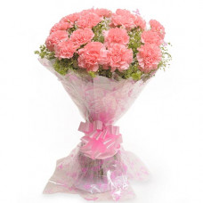 15 pink carnation bunch