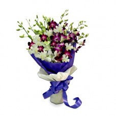 12 purple white orchids net pack bunch