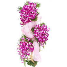 3 layer orchid basket
