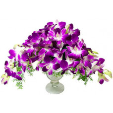 Purple Orchids in Glass
