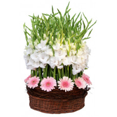 white glads with pink gerbera in cane basket - 1