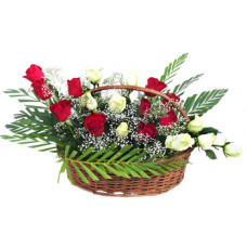 24 red n white roses in handle cane basket