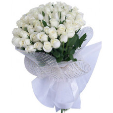 60 white roses in organdi packing